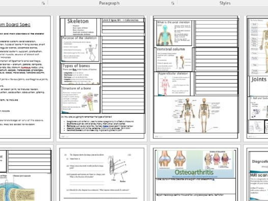 BTEC Health & Social Care Unit 3 Anatomy & Physiology B2 ...