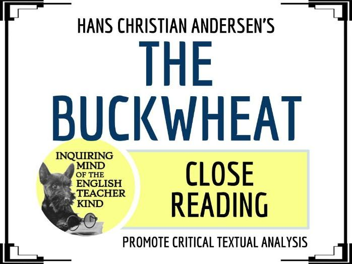 "Close Reading of ""The Buckwheat"" by Hans Christian Andersen"