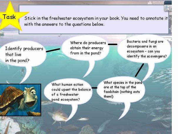 Freshwater ecosystem worksheet answers