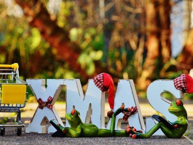 Christmas: Functional Skills English Writing - Entry Level 2 (5 Writing Activities)
