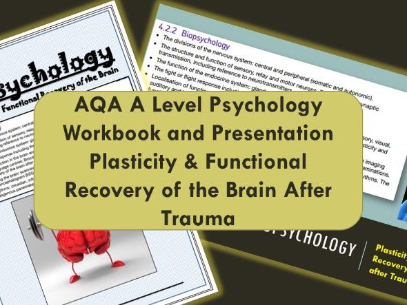 AQA A Level Psychology- Plasticity & Functional Recovery of the Brain - Biopsychology
