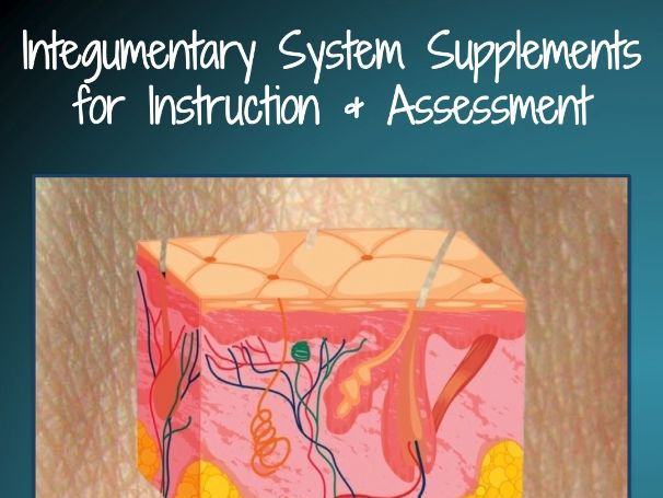 Integumentary System Supplements for Instruction and Assessment