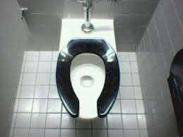 Which is best? Toilets