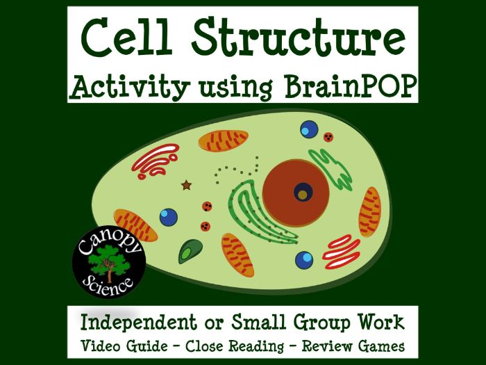 Cell Structure Activity using BrainPOP