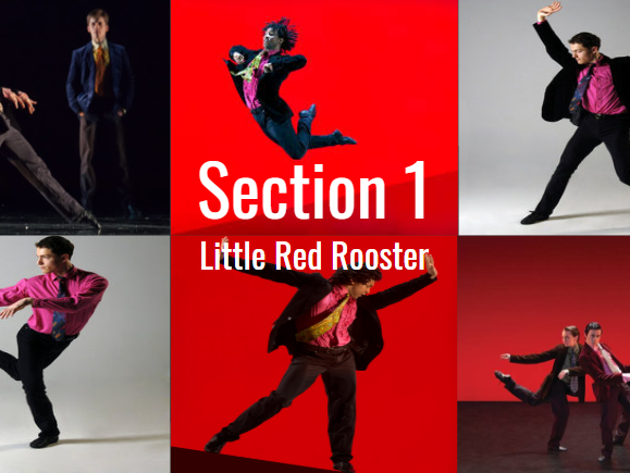 Rooster Section 1 LRR (A-Level A Level Dance)