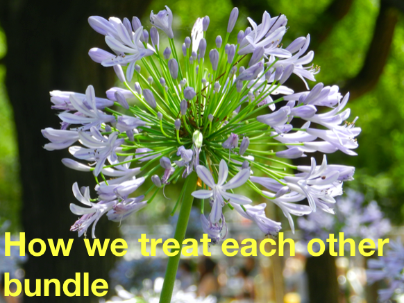 How we treat each other bundle: Primary Mindfulness and Wellbeing through real stories.