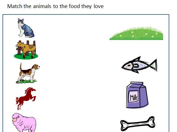 animals and their food worksheet by ritureddi teaching resources. Black Bedroom Furniture Sets. Home Design Ideas