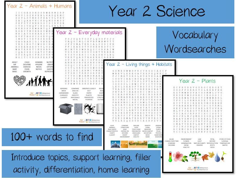 Year 2 Science vocabulary word searches x 4 - over 120 terms