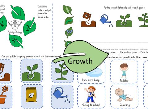 Growth in EYFS