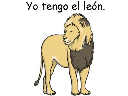 Spanish Animal Loop Cards