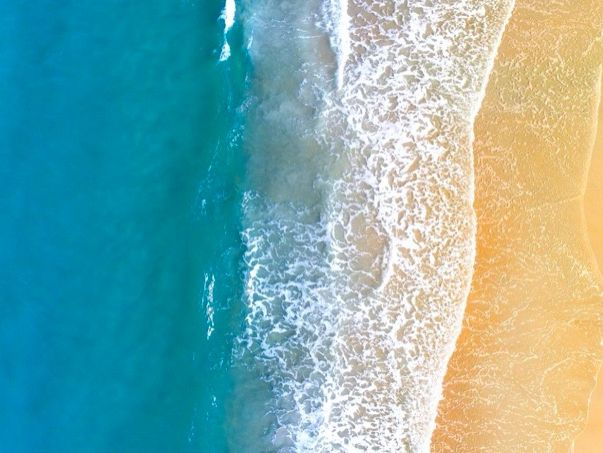 ESL Lesson - THE OCEAN