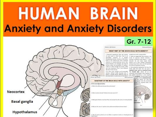 Science Literacy Reading Article:- HUMAN BRAIN: Anxiety and Anxiety Disorders