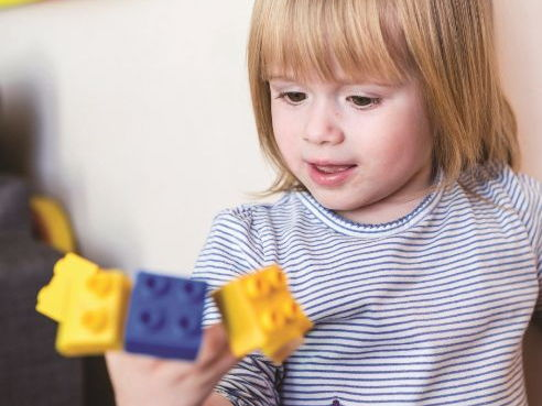 Mathematics in the Early Years (Free sample/taster pages only)