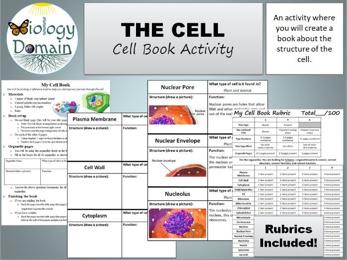 Cell Book Activity with rubric and answer key