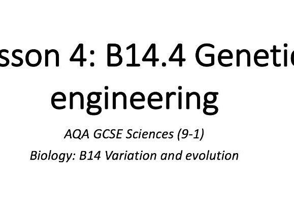 B14.4 Genetic engineering