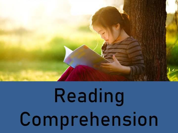 The Slave Trade Reading Comprehension Activity
