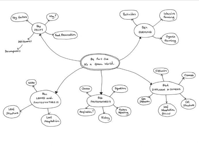 Mind Maps For B4 Its A Green World Ocr Gateway Legacy By