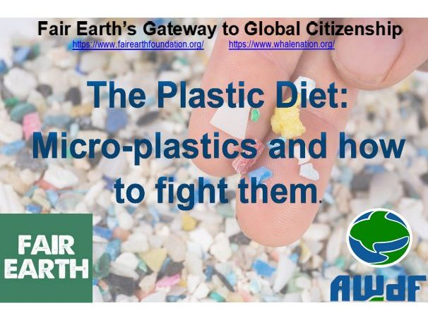 Microplastics & Our Diet - Fair Earth Resources