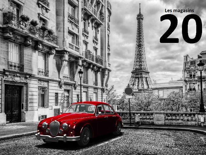 French FLE/ DELF: Lecon 20