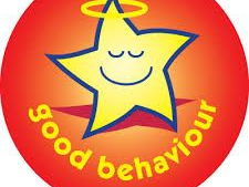 Behaviour Audit for SLT