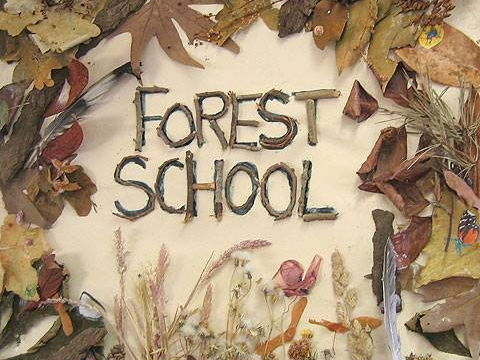 Forest School starting up mega bundle