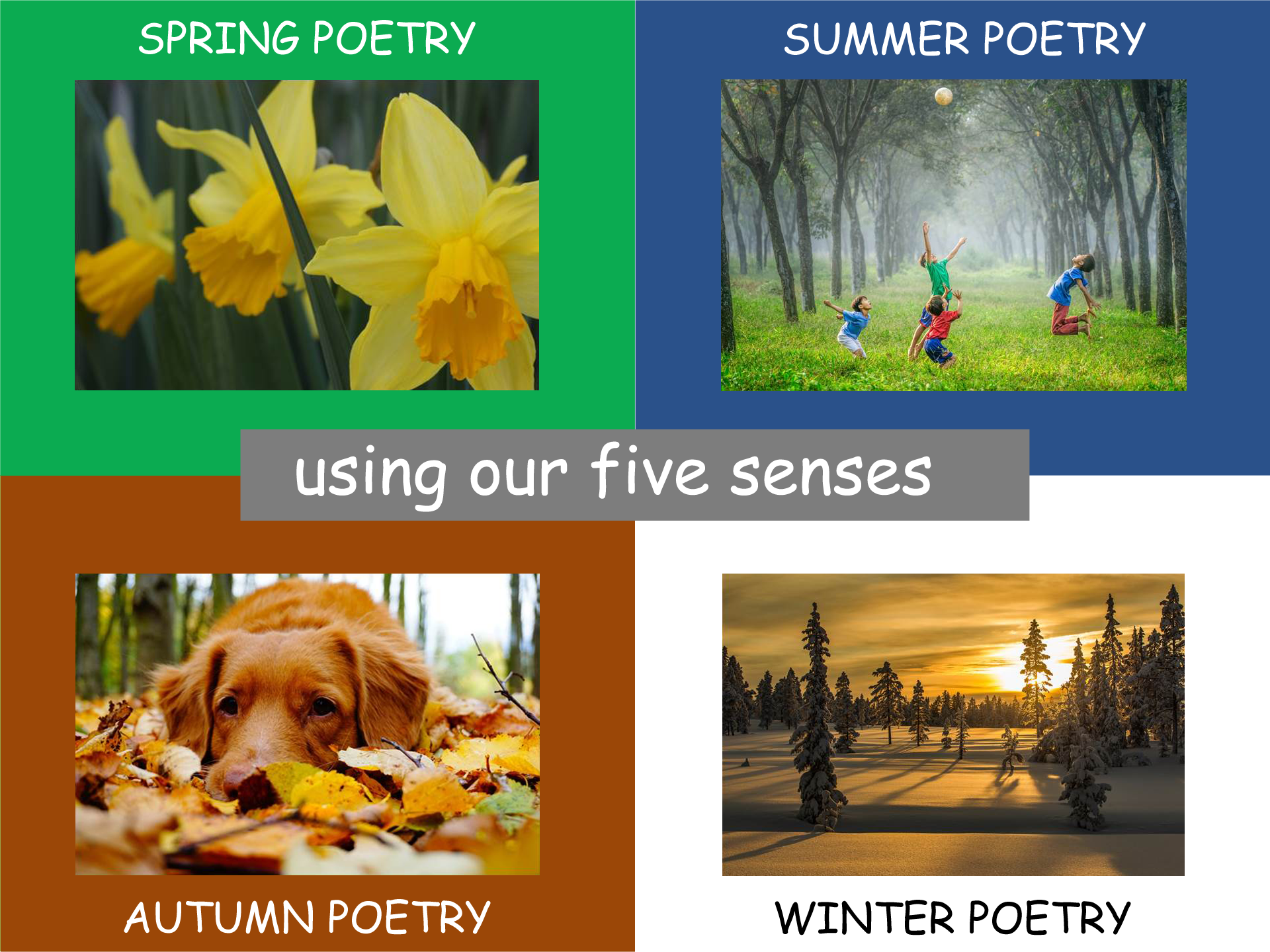 How to Write a Poem for each Season using your Senses  KS2 (4 power points/4 lesson plans)