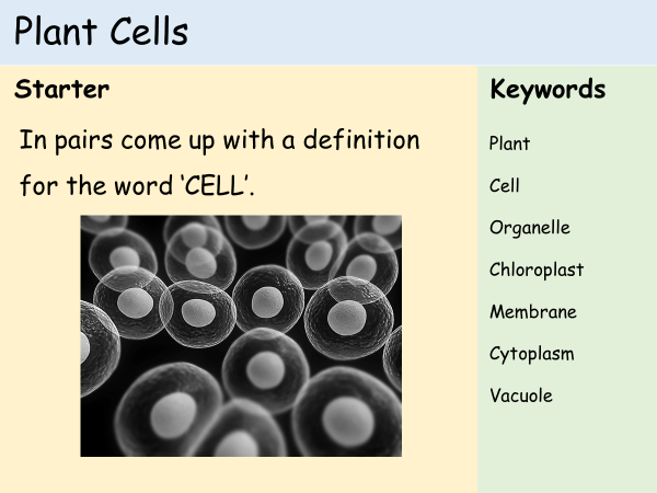 KS3 Cells - Lesson 2 - Plant Cells