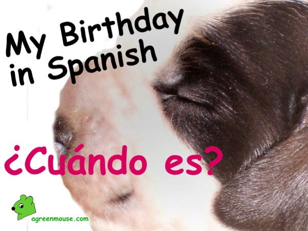My Birthday in Spanish - Video + Worksheet