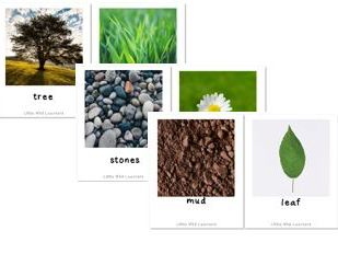 Forest School Outdoor Learning photo cards