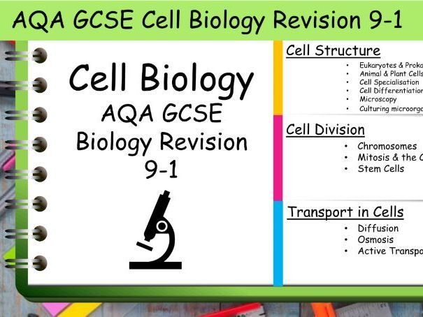 B1 Cell Biology AQA GCSE Science Biology Revision 9-1