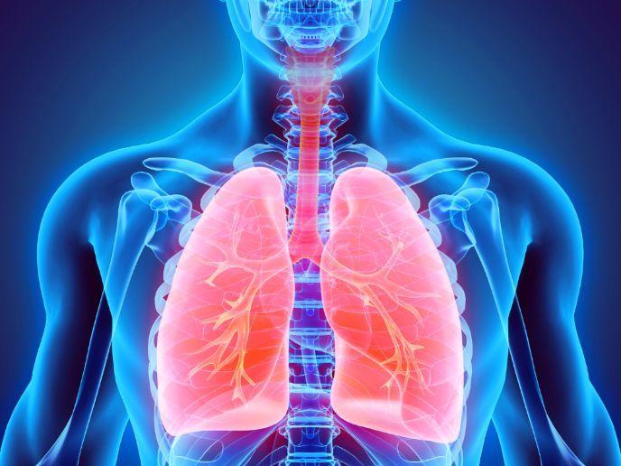 AQA GCSE PE - 2016 New Spec - Revision - 1.3 Respiratory system broadsheet