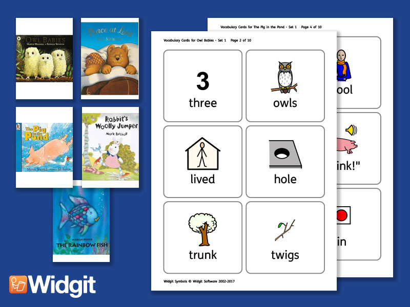 Big Books Pack 2 - Flashcards with Widgit Symbols