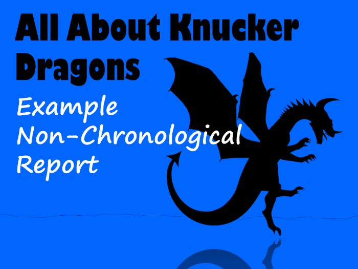 Dragon Non-Chronological Report Example Text, Feature Identification & Answers