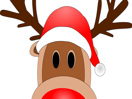 Christmas Reindeer  faces with numbered noses 0-20