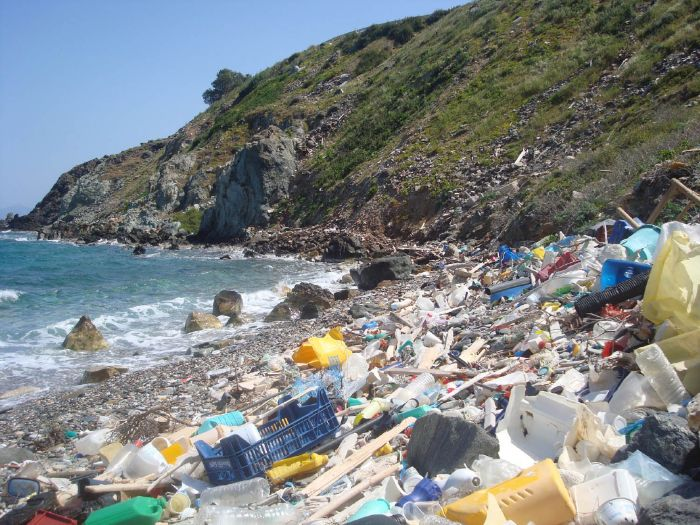 Solutions to Plastics in the Ocean - Reading Resource - Geography in the News