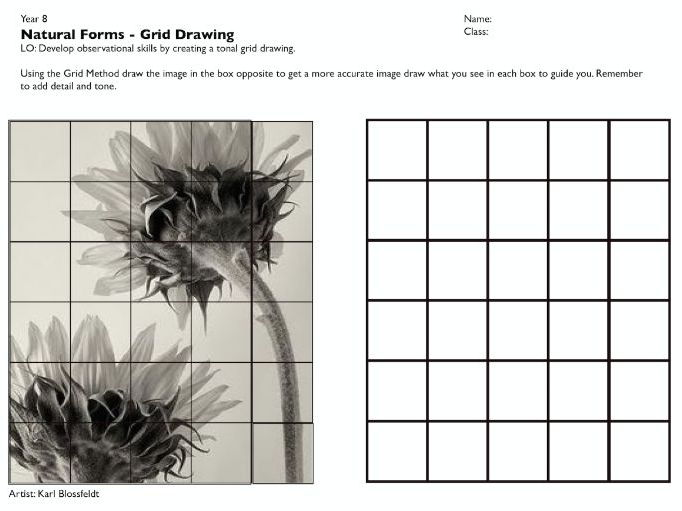 Book Cover Drawing Lessons ~ Cover lesson natural forms grid drawing by k saara