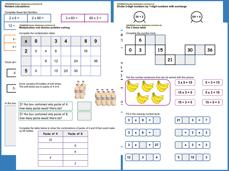 Year 3 Multiplication and Division Set