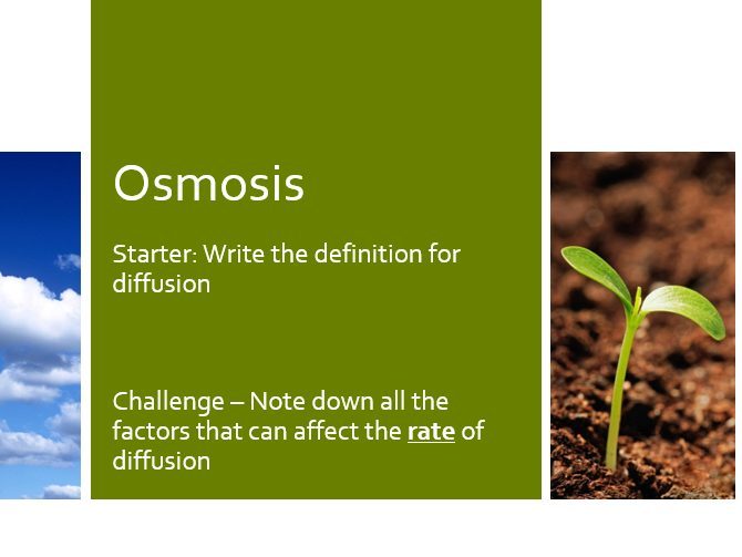 KS4 AQA GCSE Osmosis [Including Lesson Plan]