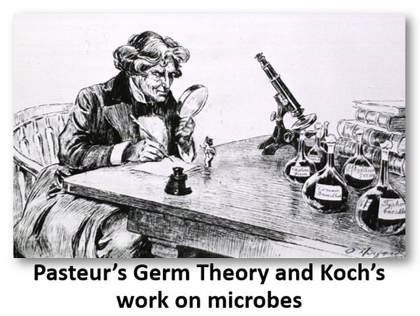 Pasteur's Germ Theory and Koch's work on microbes