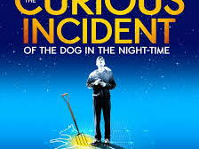 'The Curious Incident of the Dog in the Night-Time'  playscript- analysing main characters