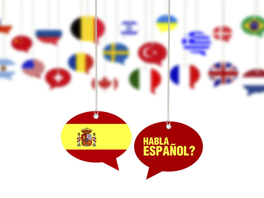 Spanish basics: alphabet, colours, numbers, time, pets, school objects, days, months...