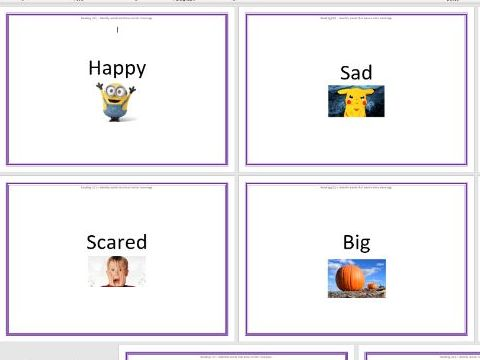 Synonyms Sorting Activity