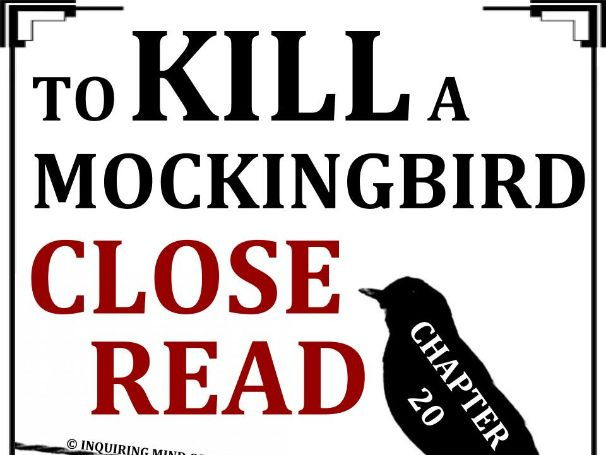 To Kill a Mockingbird Close Reading Worksheet (Chapter 20)