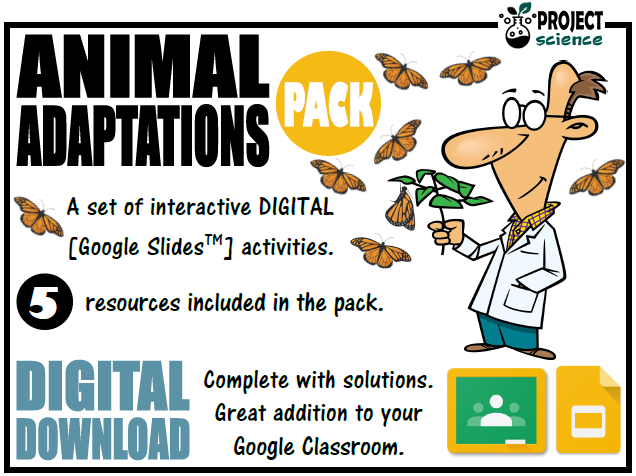 Animal Adaptations Digital Resources Pack - Distance Learning