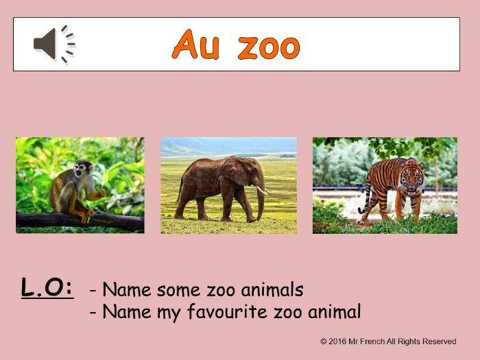Au zoo (At the zoo in French) 3 lessons! Y3  2nd Grade