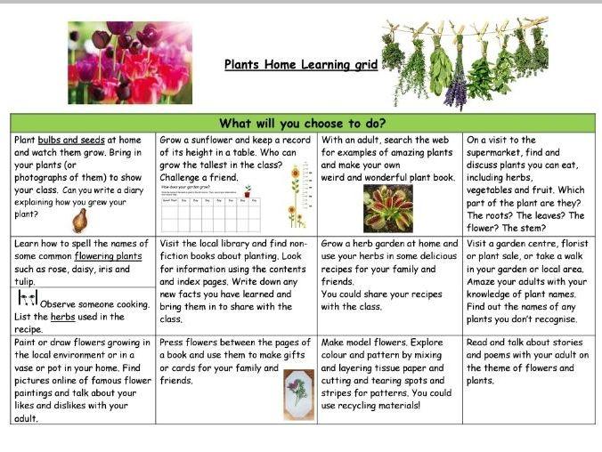 Plant Homework Grid