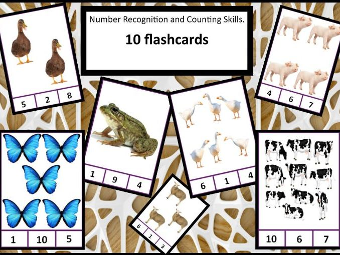 Animal Counting Peg Cards 1-10
