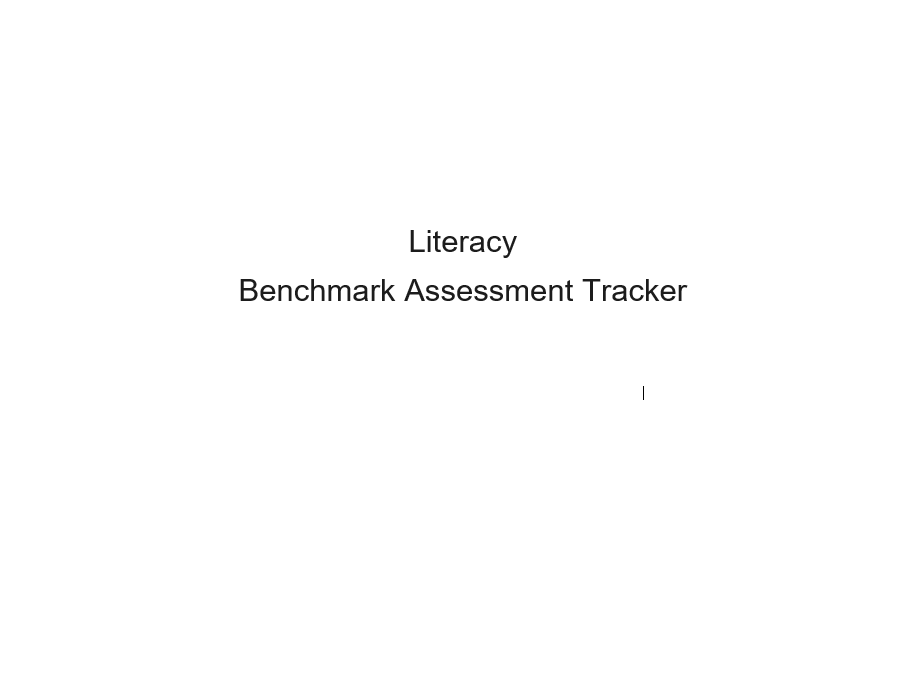 Second Level Literacy Benchmarks