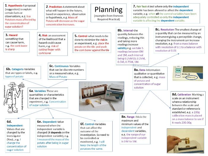 Required Practical Graphic Organiser Placemat