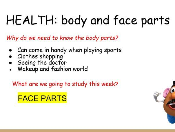 French face parts. Health body parts